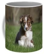 110506p160 Coffee Mug