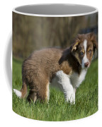 110506p161 Coffee Mug