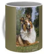 110506p178 Coffee Mug