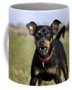 110506p188 Coffee Mug