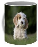 110506p204 Coffee Mug