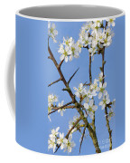 110506p221 Coffee Mug