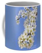 110506p225 Coffee Mug