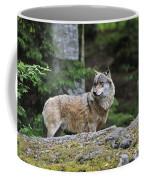 110613p022 Coffee Mug