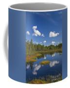 110613p186 Coffee Mug