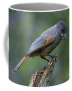 110613p214 Coffee Mug
