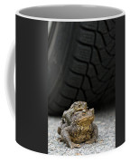 110714p108 Coffee Mug