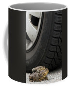 110714p110 Coffee Mug