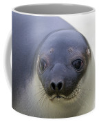 110714p130 Coffee Mug