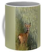 110714p133 Coffee Mug