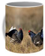 110714p175 Coffee Mug