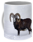 110714p275 Coffee Mug