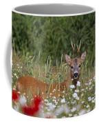 110714p324 Coffee Mug
