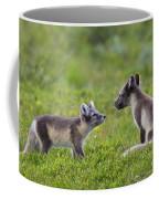 111130p054 Coffee Mug