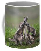 111130p061 Coffee Mug