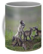 111130p063 Coffee Mug