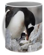 111130p146 Coffee Mug