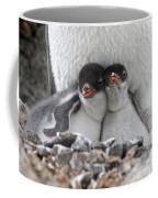 111130p166 Coffee Mug