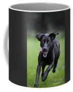 111130p197 Coffee Mug