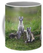 111216p022 Coffee Mug