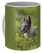 111216p030 Coffee Mug