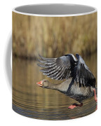 111216p036 Coffee Mug