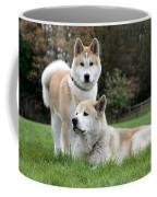 111216p239 Coffee Mug