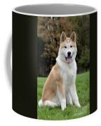111216p241 Coffee Mug