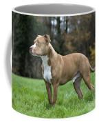 111216p245 Coffee Mug