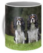 111216p253 Coffee Mug