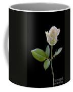 111216p340 Coffee Mug