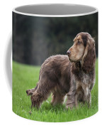 111230p047 Coffee Mug