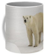 Polar Bear Walking On Ice Coffee Mug
