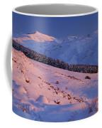 Sierra Nevada Coffee Mug