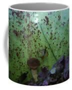 Tropical Fish And Coral Coffee Mug