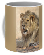 120118p040 Coffee Mug