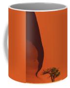120118p072 Coffee Mug