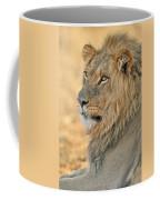 120118p092 Coffee Mug