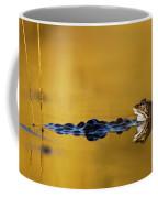 120206p199 Coffee Mug