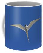120206p270 Coffee Mug