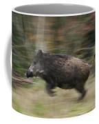 120223p245 Coffee Mug