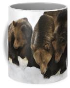 120223p304 Coffee Mug