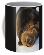 120223p308 Coffee Mug
