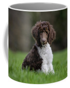 120401p288 Coffee Mug