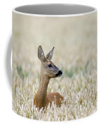 120425p010 Coffee Mug