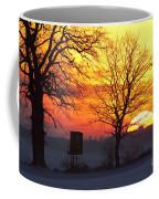 120425p240 Coffee Mug