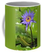 120520p014 Coffee Mug
