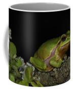 120520p059 Coffee Mug