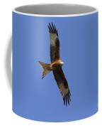 120520p327 Coffee Mug