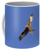 120520p328 Coffee Mug
